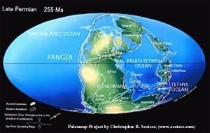 Paleomap 255