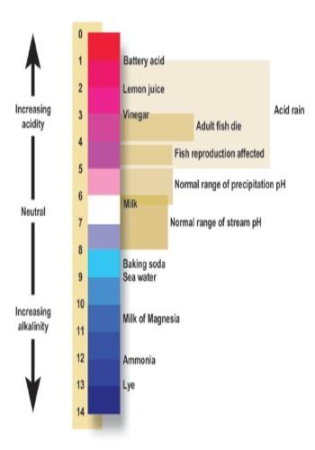 pHscale