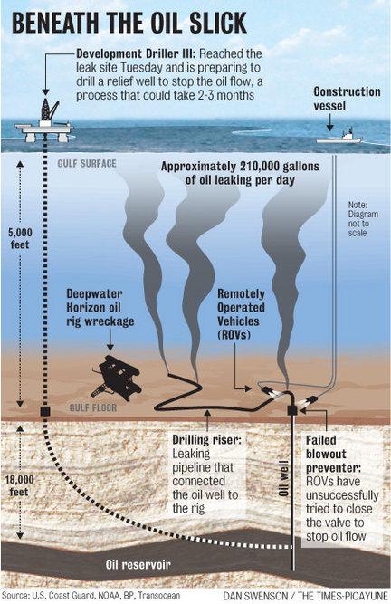 Gulf-cross-section-oil-spill