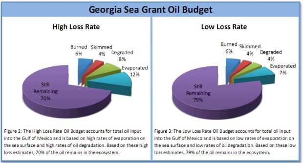 georgia-oil-budget