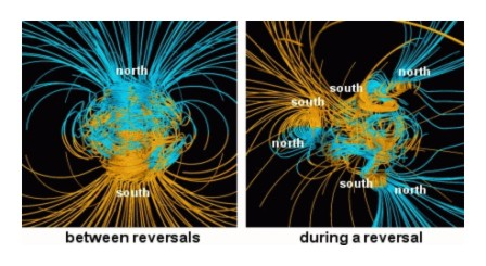 Earth magnetic life during reversal