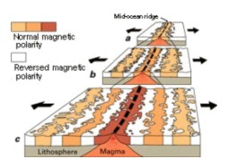 Mid ocean ridge magnetics
