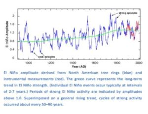 El nino amplitude from tree rings