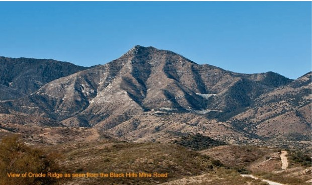 Oracle-Ridge-view