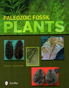 Paleozoic fossil plants cover