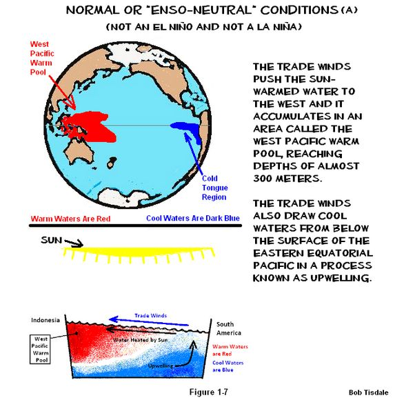 essay about el nino Free essay: el nino we live on an incredibly large planet even broader than the  size of the planet are the amount of changes and relationships between.