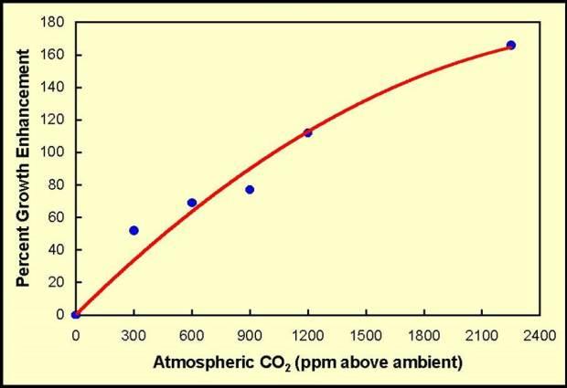 sitemgr_CO2GrowthResponse