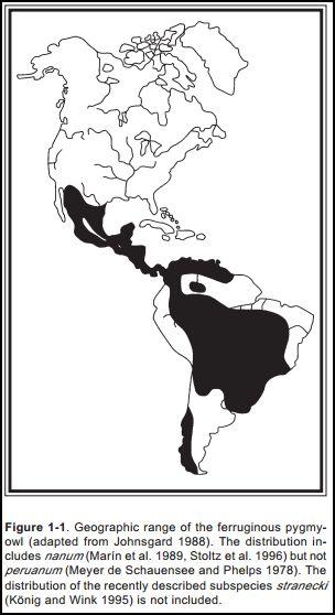 Ferrugious owl range map