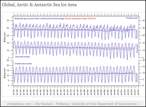 Sea ice global