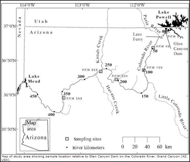 Se Colorado Map.Colorado River Wryheat