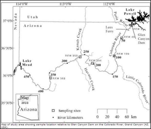 USGS Hg Se study map