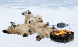 polarbearparty