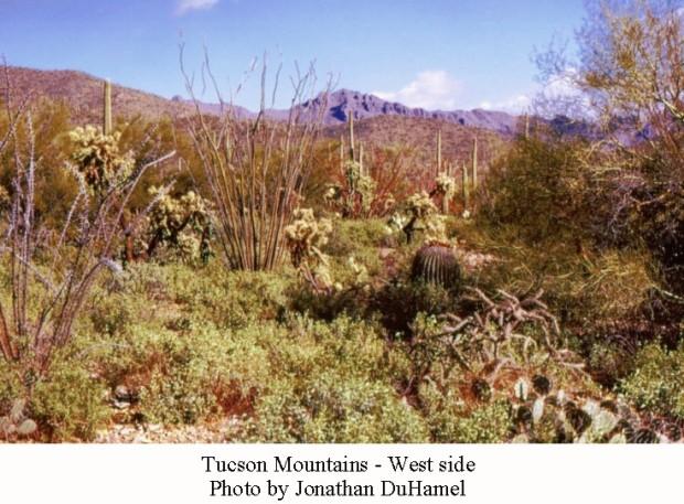 TucsonMtns03